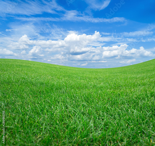 Foto op Plexiglas Weide, Moeras Green field and meadows against the blue sky with white clouds.