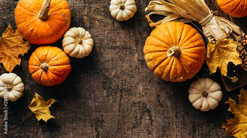 Obraz Pumpkins and corn and autumn leaves on old shabby background. Autumn background with copy space. - fototapety do salonu