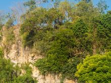 Cliff Covered In Green Vegetation In Padang, Padang In Bali, Indonesia.