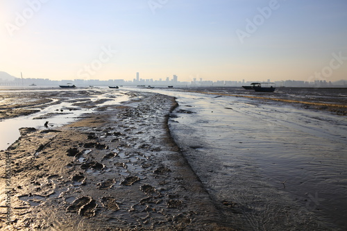 shenzhen city skyline with the tidal wave beach, scenes from hong kong to shenzh Wallpaper Mural