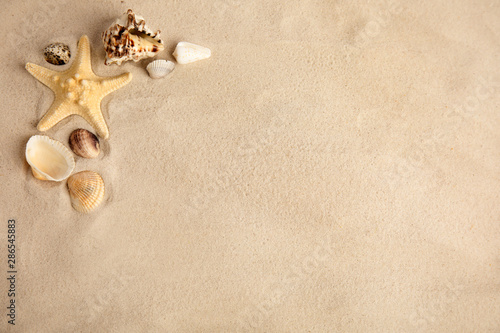 Fotografia Flat lay composition with beautiful starfish and sea shells on sand, space for t