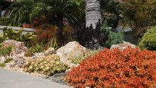 Drought-tolerant Residential Landscaping