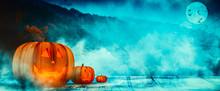 Halloween Pumpkins Illuminated In The Dark Night