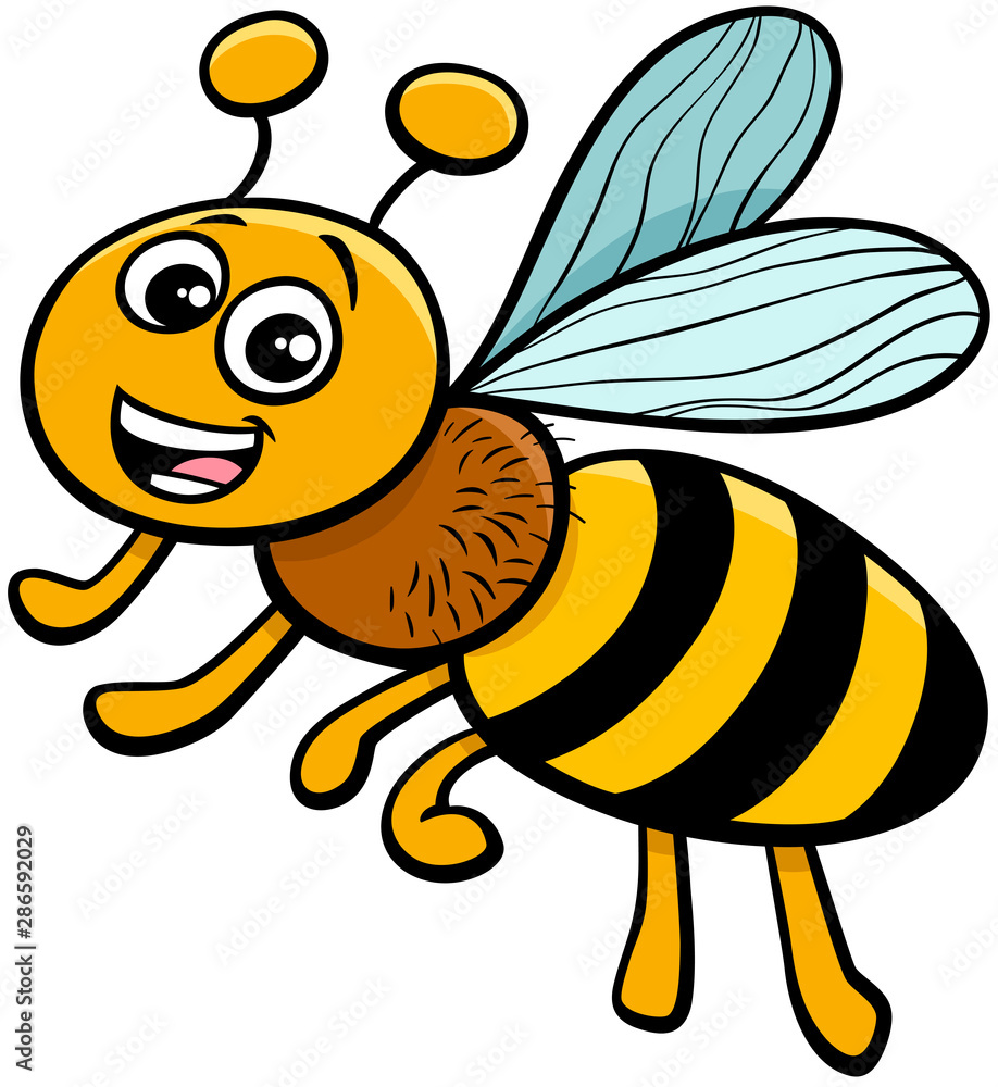 Fototapety, obrazy: honey bee insect character cartoon illustration
