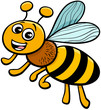 honey bee insect character cartoon illustration