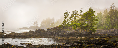 Photo Misty shoreline of Botany Bay on west coast of Vancouver Island, British Columbia, Canada, with sun beginning to beak through the fog