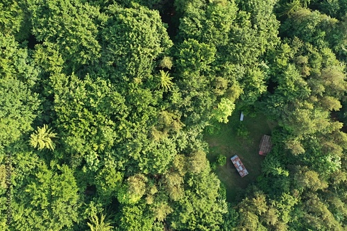 Aerial top down view of spring broadleaf forest with some small sheds or beekeep Fototapeta