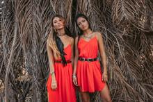 Two Beautiful Young Fashionabl...