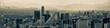 Mexico City Panoramic Skyline Cityscape