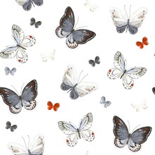 Seamless Pattern With Colorful Butterflies, White, Black, Red And Gray Colors. Vector Illustration In Vintage Style.