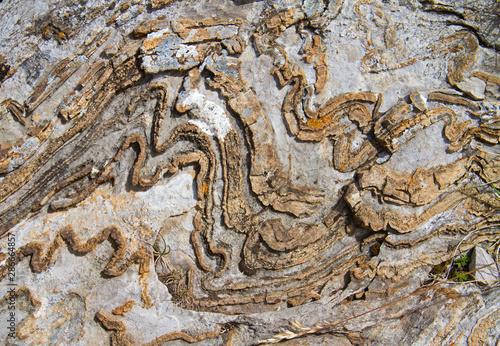Fényképezés Deformed, curved layers in rock