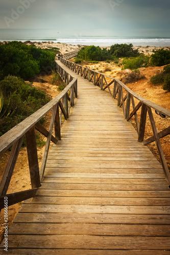 Fototapeta pomost   drewniany-chodnik-do-morza-na-plazach-chiclana-w-kadyksie