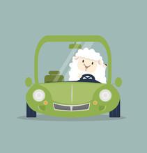 Cute White Little Sheep Drivin...