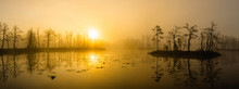 Landscape Of Misty Sunset Over The Swamp. Reflection In Water.
