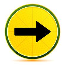 Next Arrow Icon Lemon Lime Yellow Round Button Illustration