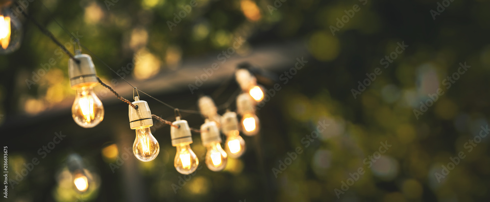 Fototapeta outdoor party string lights hanging in backyard on green bokeh background with copy space