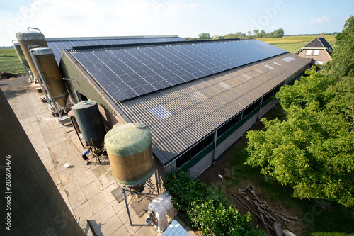 Obraz Modern farm with solar panels on the roof of a cowshed - fototapety do salonu