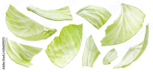 Canvas-taulu Sliced cabbage isolated on white background, top view