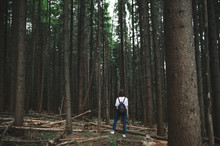 Back View On A Stylish Tourist Woman Standing In The Middle Of The Mountain Fir Forest Looking Far Ahead. Young Female Traveler Walking In The Coniferous Woods Enjoying The View.