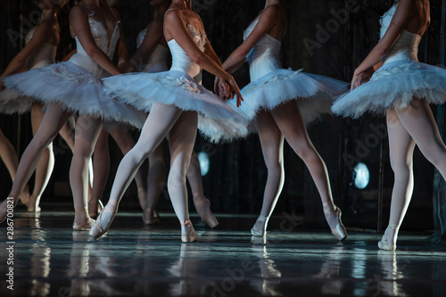 Obraz na plátně  Swan Lake ballet. Closeup of ballerinas dancing