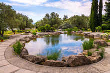 Fragment Of Beautiful Garden With An Artificial Pond In Summer