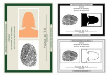 ID Card. Only Graphical Representation Without Scale Or Precision Of The Original Elements.