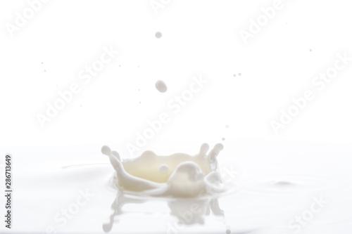 Fotografie, Tablou  splash from falling drops of white milk on a white background