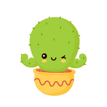 Cute Happy Smiling Cactus In Pot Show Muscle