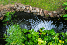Decorative Pond With Fountain ...