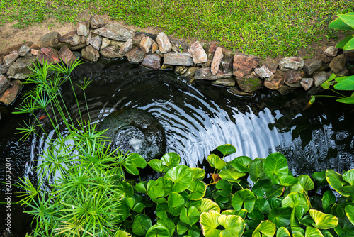 Obraz Decorative pond with fountain and gold fish in garden - fototapety do salonu