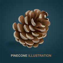 Pine Cone Realistic Illustrati...