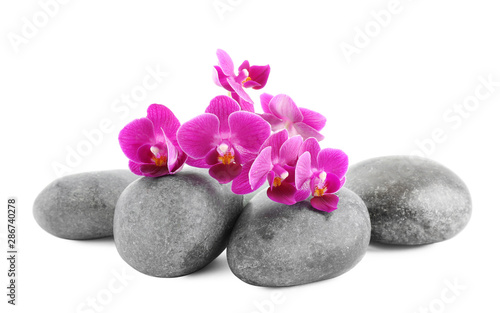 Fototapety, obrazy: Orchid with spa stones on white background