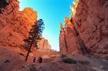 Hiking Bryce Canyon