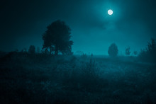 Night Mysterious Landscape In Cold Tones - Silhouettes Of The Trees Under The Full Moon On Dramatic Night Sky.