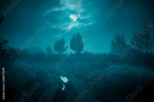 Foto op Canvas Groen blauw Night mysterious landscape in cold tones - silhouettes of the trees under the full moon through the clouds on dramatic night sky.