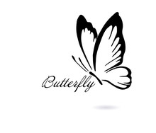Logo Abstract Butterfly. Vecto...