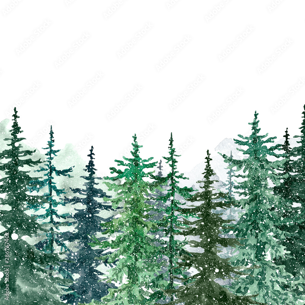 Fototapety, obrazy: Watercolor winter forest with evegreen pine trees and falling snow. Hand painted spruce and pine trees illustration. Landscape scene for Christmas cards, banners. Holiday design.