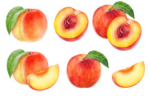 Peach Fruit Watercolor Isolate...