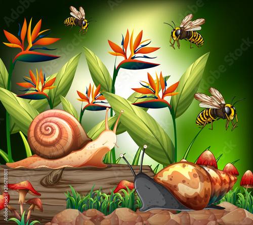 Türaufkleber Kinder Background scene with bee and snails in garden