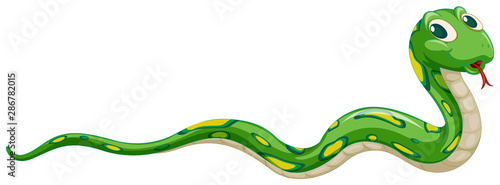 Canvas Prints Kids Green snake on white background
