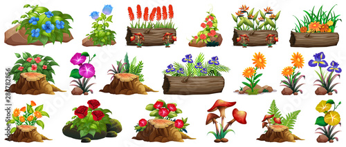 Photo Stands Kids Large set of colorful flowers on rocks and wood