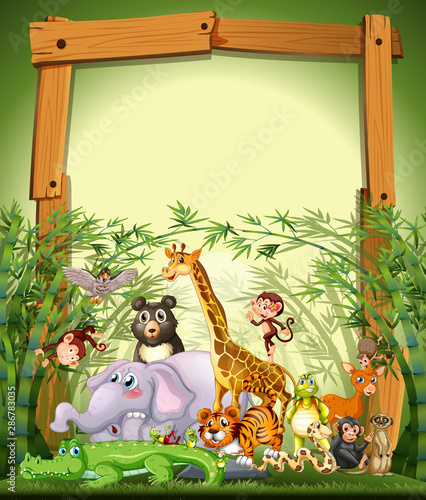 Photo Stands Kids Border template design with cute animals in bamboo forest