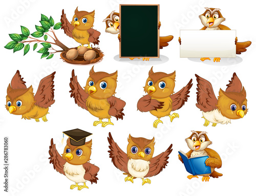 Tuinposter Kids Brown owl in different poses on white background