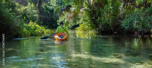 Fotografie, Obraz  Kayaking on Juniper Springs Creek, Florida