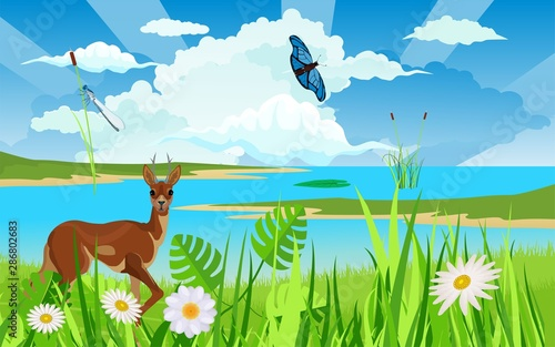 Wildlife nature scene, deer at the river vector