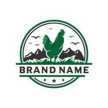 Vintage Chicken Livestock Logo Design Template
