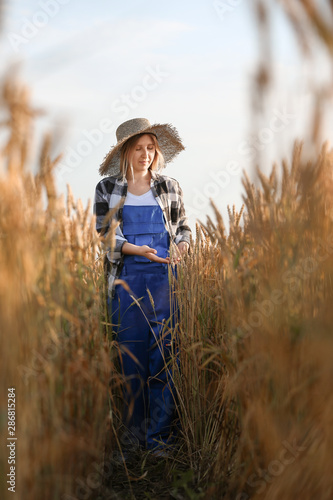 Photo  Farmer in field on sunny day