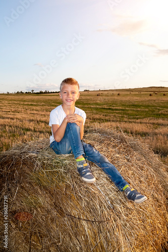 Fotografie, Obraz smiling boy sitting on haystack at sunset