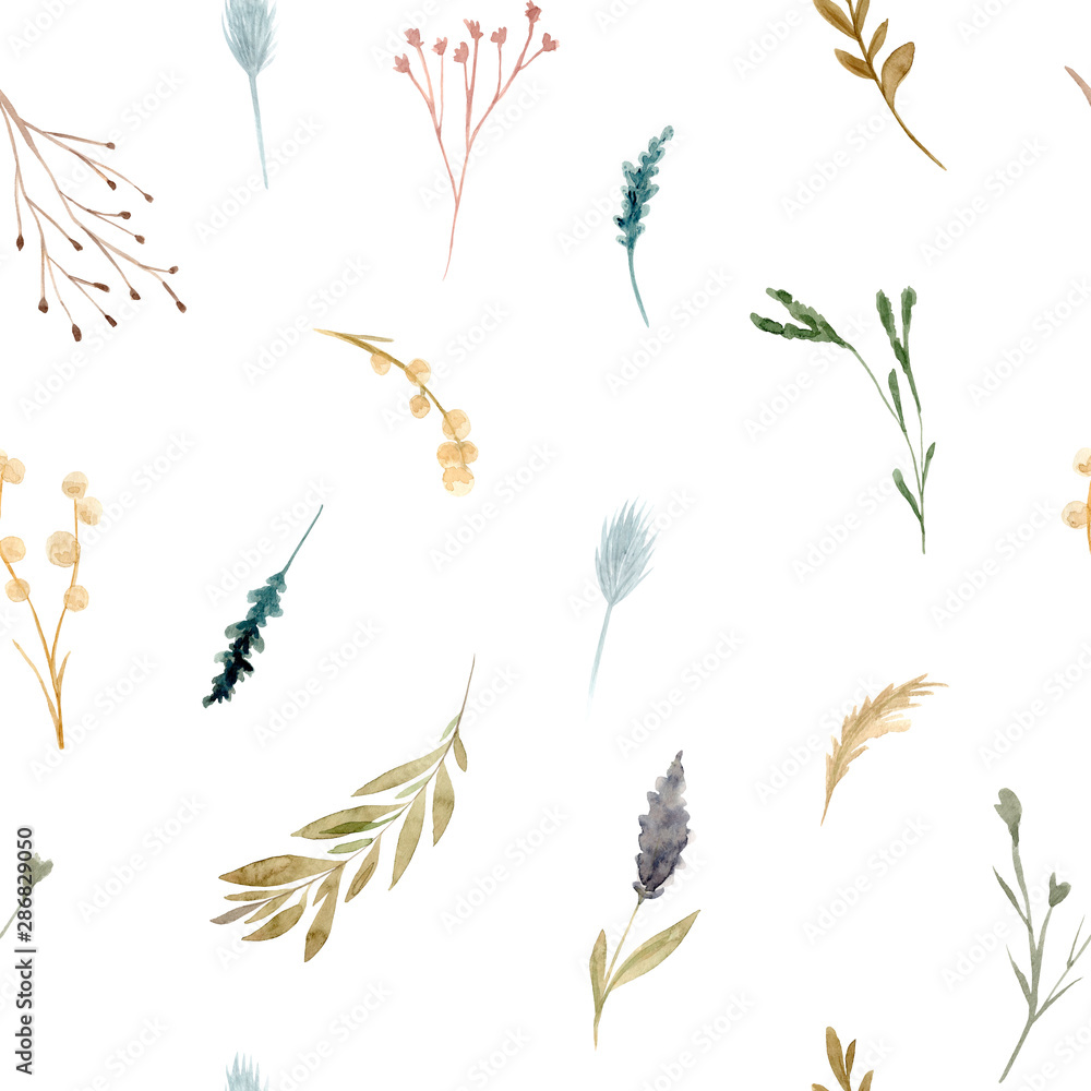 Fototapety, obrazy: Seamless pattern of watercolor dried flowers, isolated on white background.