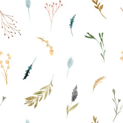 Fototapeta Łąka Seamless pattern of watercolor dried flowers, isolated on white background.